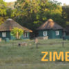 campo e servizi in zimbabwe