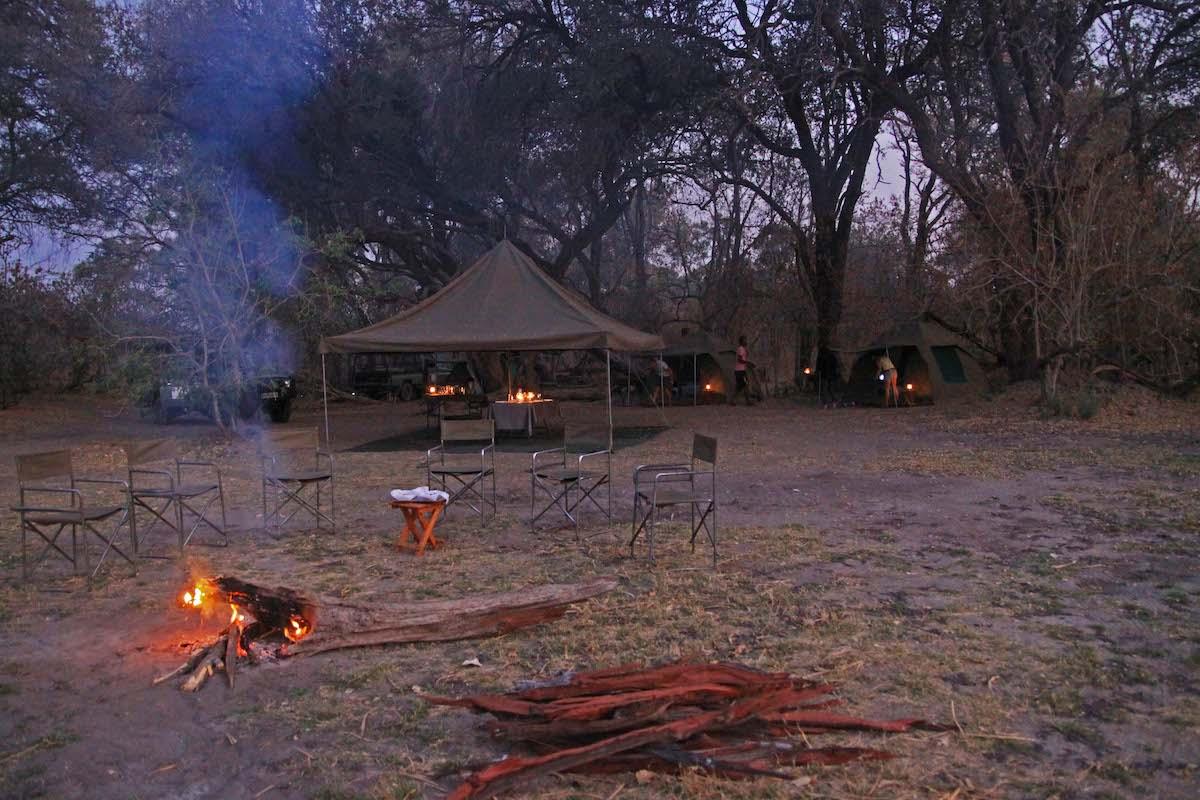 campo botswana